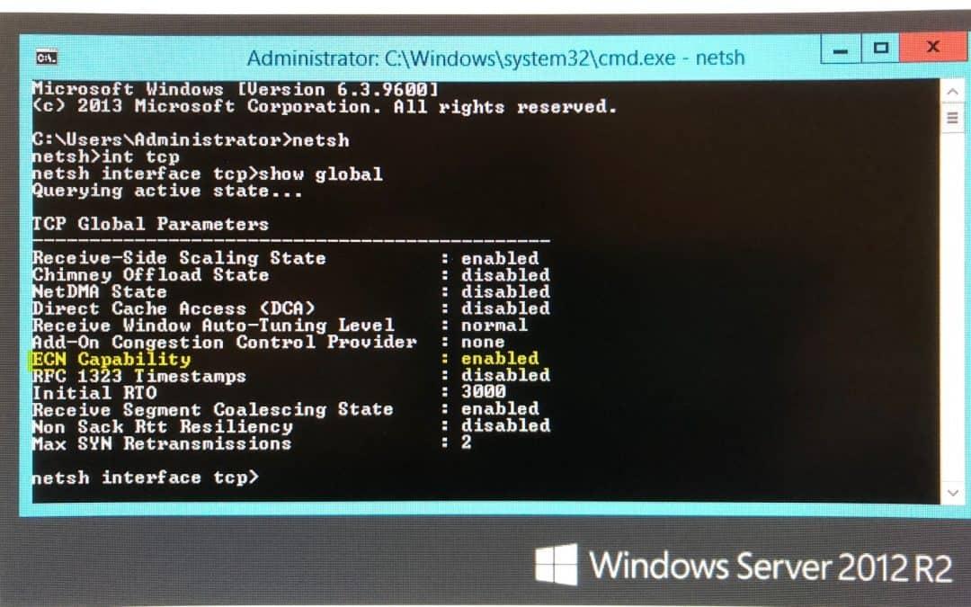 Windows Server 2012 R2 Slow Download Speeds